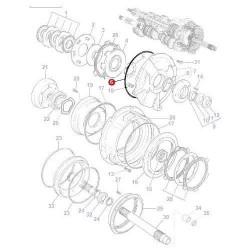 SKR7096 O-ring 378291X1 Massey Ferguson