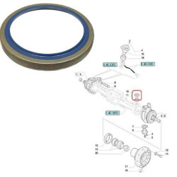 SPR2503 Komplet sprzęgła Case 2 speed 3125257R91